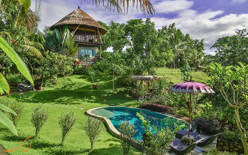 بهترین هتل های جنگلی بالی