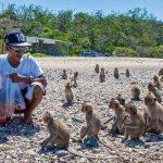 جزیره میمون پاتایا