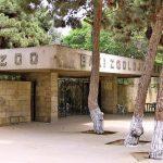 باغ وحش باکو