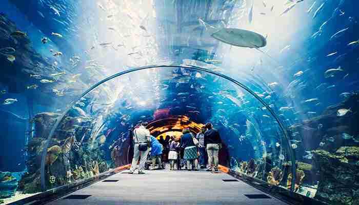 دنیای زیر آب در دبی مال