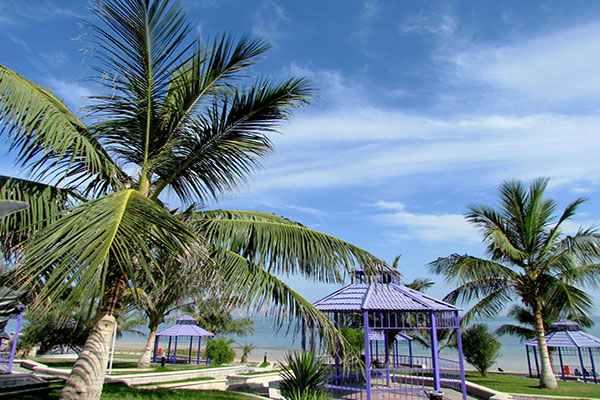 پارک ساحلی زیتون قشم